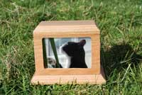 Photo frame ashes container